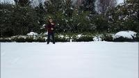 雪 一剪寒梅