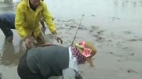 钓鱼:这样抓鱼很过瘾,就是太浪费劳动力!