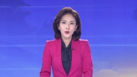 广东新闻联播20190214 省委实施乡村振兴战略领导小组召开会议 李希主持会议
