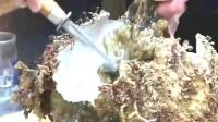 海鲜刺身最高级的做法,光是看着就忍不住流口水!