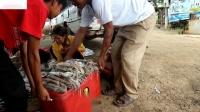 如何清洁鱿鱼鱿鱼和如何清洁配方清洁鱿鱼