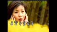 谢采妘 - 03.几度花落时(DVD超清版)