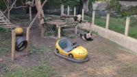 VID_20181112_112404喜戏的熊猫