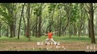 赵巧红_剑和枪 中英文字幕VUE_20181227133638