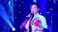 故乡雨 Mưa Trên Quê Hương 演唱 玉翘莺 Ngọc Kiều Oanh、梅献 Mai Hiên、琼芝 Quỳnh Chi