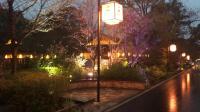 拈花湾鹿鸣谷夜景