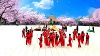 中老年广场舞《打花棍》简单又健身