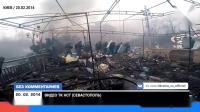Показали впервые как севастопольский Беркут покидал Майдан