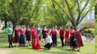 犍为红歌舞蹈队鹭岛自由活动