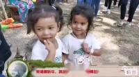 柬埔寨2019新年活动花絮  扭起来!
