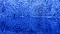 4K 絶景 癒し自然映像 冬景色の御射鹿池 Japan Mishaka Pond of winter Christmas colors