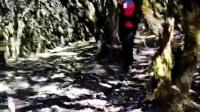 小龙肘山的原始森林
