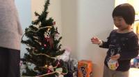 20181217爱玛4岁半—给圣诞树上挂盒子
