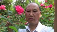 凯里黄平苗族聊天(2)
