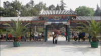 歌友姐妹们在北京《中山公园翩翩起舞》 2019年4月21日。