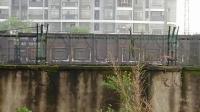 HXD1C0250-货列通过新余市人民路立交桥