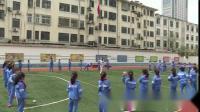 持轻物掷远-小学体育优质课(2018)