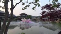 20190507拈花湾第二集-水上秀:花开五叶(莲花)
