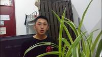 昆山世硕实习生视频影集mp4