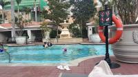 澳门威尼斯人泳池