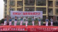 樟树星河舞蹈队《月亮女神》樟树市广场舞姐妹联谊会 2019年5月19日