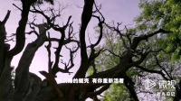 晋祠(20190515)24