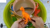 在野生动物园动物和海洋动物的名字孩子学习的颜色与恐龙玩具鲨鱼玩具55