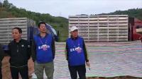 重庆大联盟赛鸽中心春棚2019年第四届加强赛视频集锦