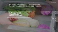 【严肃数码】松下大型十字门冰箱 发布会视频Demo