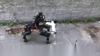 德国伯恩大学-半人马机器人-Momaro_高清