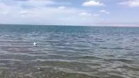 治愈系的大自然声音? #夏天就是要玩水#