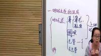 人教2011課標版生物七下-4.3.1《呼吸道對空氣的處理》教學視頻實錄-陳玉桂