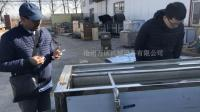果蔬清洗加工线#豆角气泡喷淋清洗机#香椿高压气泡清洗机厂家