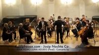 Josip Nochta - JUAN PEDRO LUNA AGUDO (Final) - Concerto by Pavel Depalj