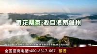 cctv1天尚贡皇海南黄花梨茶广告样片