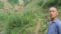 陕西省,、平利县正坤天星风水术黄朝阳风水师在本地猫儿沟里面评断一棺叫花坟,这棺叫花坟后人出过状元,这棺地堂局不大。联系张子诚师父的何助理。