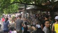 黄龙溪端午节成泼水节