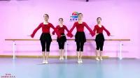 张暾舞蹈-中国舞 民族舞 古典舞 芭蕾舞 考级教材 第四级 《啄木鸟》