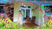古典扇子舞 三月桃花雨 (亚西亚个人版)