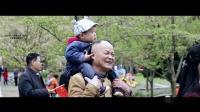 2019海上丝绸之路(厦门)文化旅游嘉年华