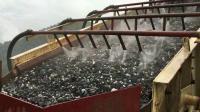 缅甸1000td金矿炭浆厂