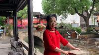 枫泾古镇游
