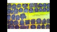 吴老师的睡前故事 第二期 《花格子大象艾玛》