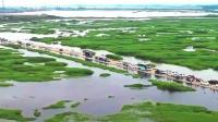 """现实版《千与千寻》!鄱阳湖再现最美""""水上公路"""""""