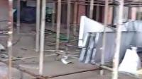 宏铝建材-铝单板安装现场
