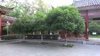 马家洲公园
