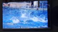 CCTV-1广告(星海电视)