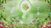 丁桂儿脐贴广告【CCTV-8HD】