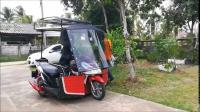 Wheelchair Accessible Trike