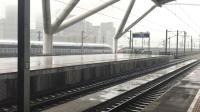 0G1304次(广州南动车所—广州南站)本务广州动车段CR400AF-2130+2064停靠广州南站